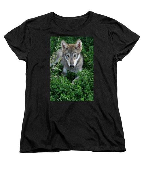 Wolf Pup Portrait Women's T-Shirt (Standard Cut) by Shari Jardina