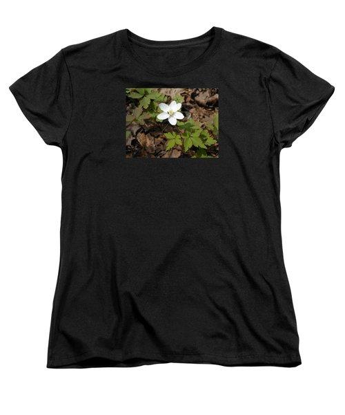 Women's T-Shirt (Standard Cut) featuring the photograph Wood Anemone by Linda Geiger