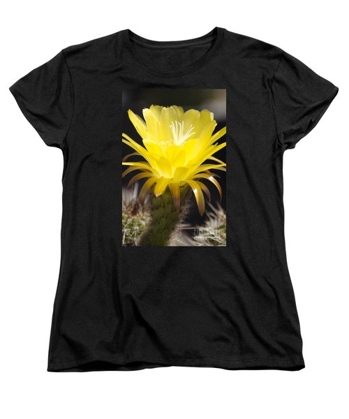 Yellow Cactus Flower Women's T-Shirt (Standard Cut) by Jim and Emily Bush