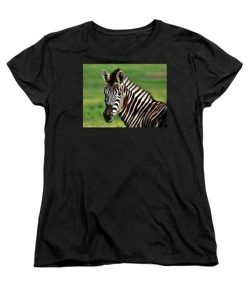 Zebra Close Up Women's T-Shirt (Standard Cut) by Werner Lehmann