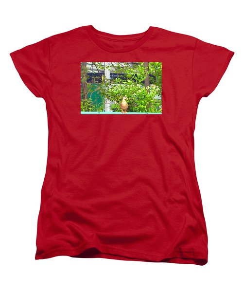 Look At Me Women's T-Shirt (Standard Cut) by Amazing Photographs AKA Christian Wilson