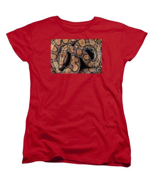 Brazilian Rainbow Boa Women's T-Shirt (Standard Cut) by Art Wolfe