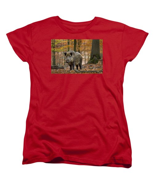 Women's T-Shirt (Standard Cut) featuring the photograph 121213p283 by Arterra Picture Library