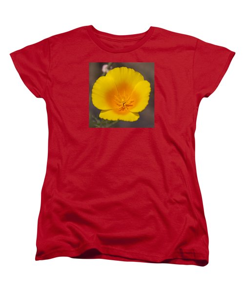 Women's T-Shirt (Standard Cut) featuring the photograph California Sunshine by Caitlyn  Grasso