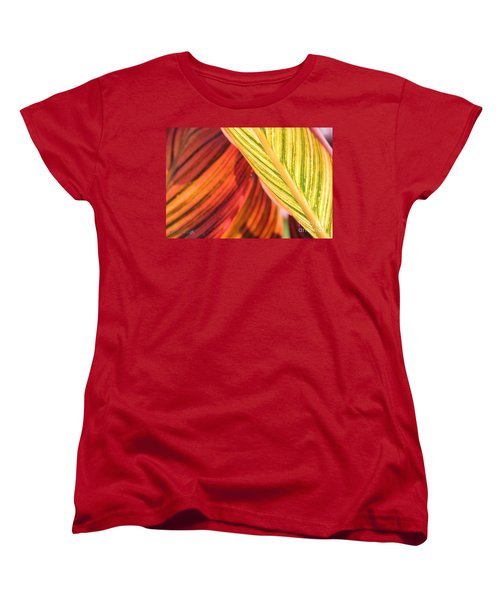 Canna Lily Named Durban Women's T-Shirt (Standard Cut) by J McCombie