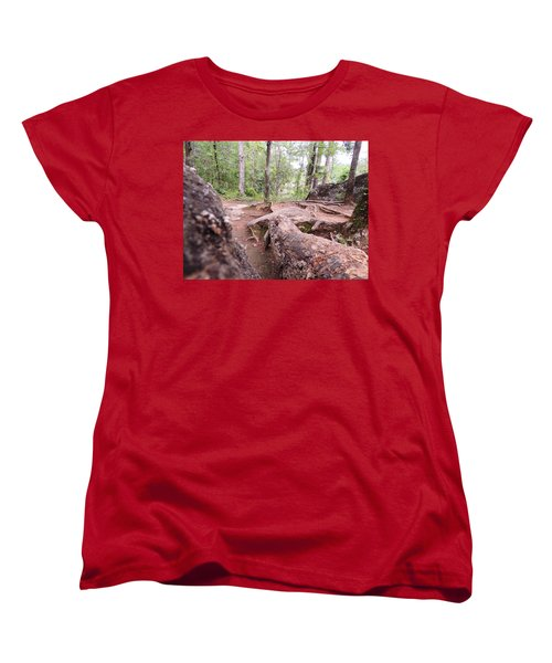 Women's T-Shirt (Standard Cut) featuring the photograph A New View From The Woods by Aaron Martens