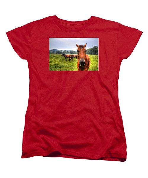 A Starring Horse 2 Women's T-Shirt (Standard Cut) by Jonny D