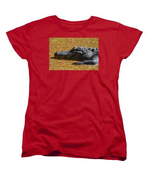 Alligator Women's T-Shirt (Standard Cut) by DejaVu Designs