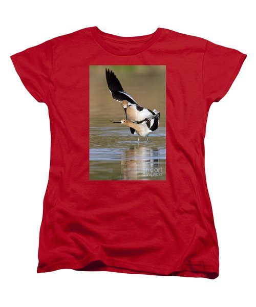 American Avocets Women's T-Shirt (Standard Cut) by Bryan Keil