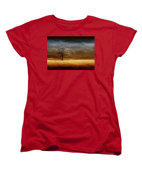 And The Rains Came Women's T-Shirt (Standard Cut) by Holly Kempe