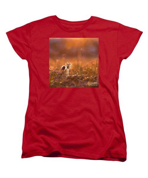 Women's T-Shirt (Standard Cut) featuring the photograph April Morning by Kennerth and Birgitta Kullman
