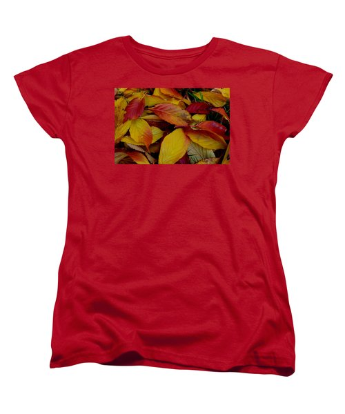 Autum Women's T-Shirt (Standard Cut) by Barbara Walsh