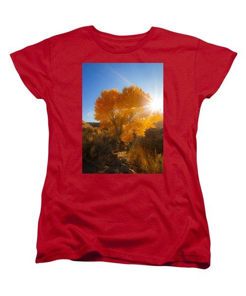 Autumn Golden Birch Tree In The Sun Fine Art Photograph Print Women's T-Shirt (Standard Cut) by Jerry Cowart