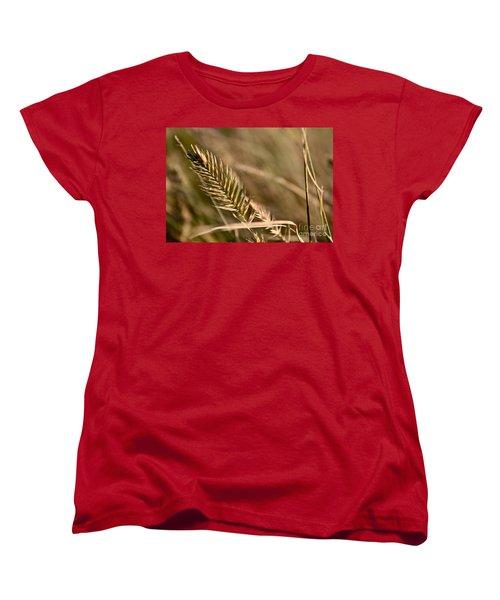 Autumn Grasses Women's T-Shirt (Standard Cut) by Linda Bianic