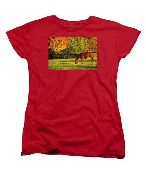 Autumn Grazing Women's T-Shirt (Standard Cut)