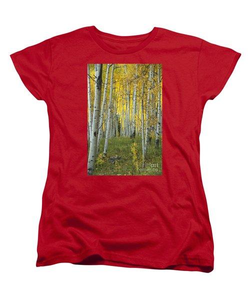 Autumn In The Aspen Grove Women's T-Shirt (Standard Cut) by Juli Scalzi