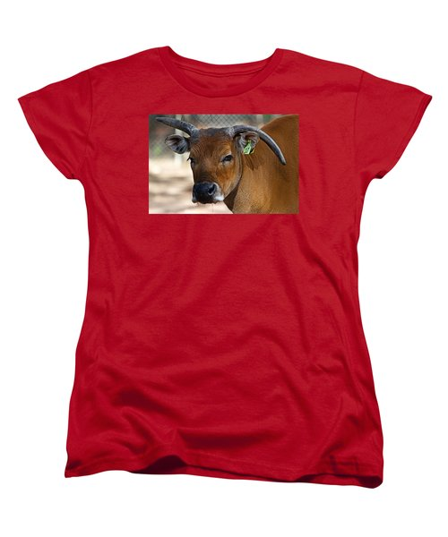 Banteng Girl Women's T-Shirt (Standard Cut) by Miroslava Jurcik
