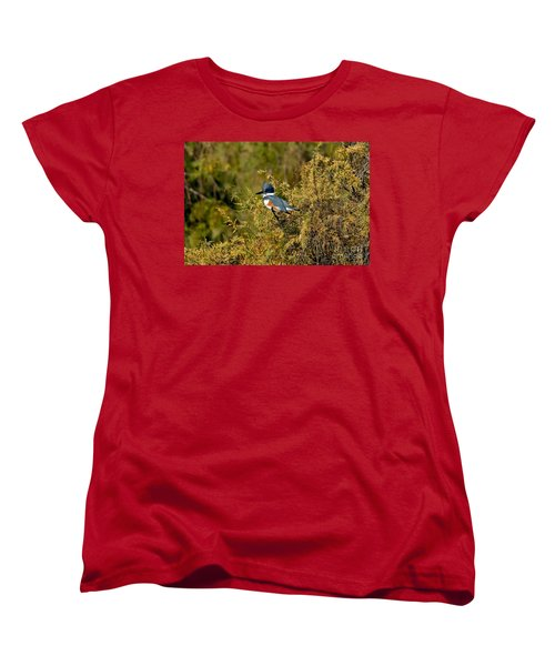 Belted Kingfisher Female Women's T-Shirt (Standard Cut) by Anthony Mercieca