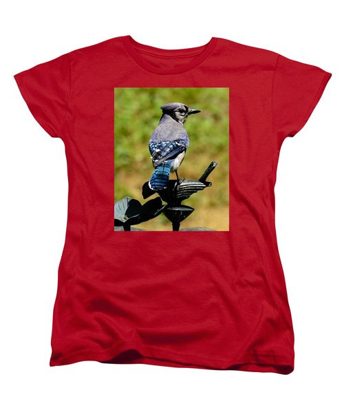 Bird On A Bird Women's T-Shirt (Standard Cut) by Robert L Jackson