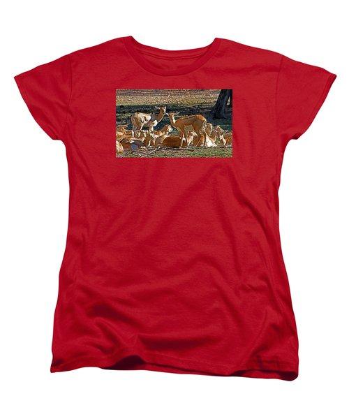 Blackbuck Female And Fawns Women's T-Shirt (Standard Cut) by Miroslava Jurcik