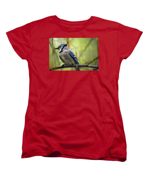 Blue Jay On A Misty Spring Day Women's T-Shirt (Standard Cut) by Lois Bryan