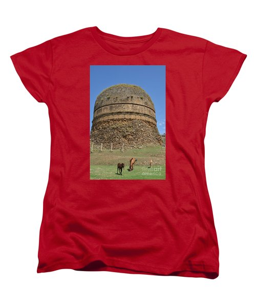 Women's T-Shirt (Standard Cut) featuring the photograph Buddhist Religious Stupa Horse And Mules Swat Valley Pakistan by Imran Ahmed