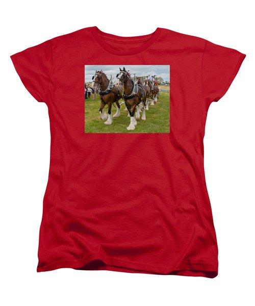 Budweiser Clydesdales Women's T-Shirt (Standard Cut) by Robert L Jackson