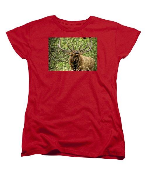 Bugling Bull Elk II Women's T-Shirt (Standard Cut) by Ron White