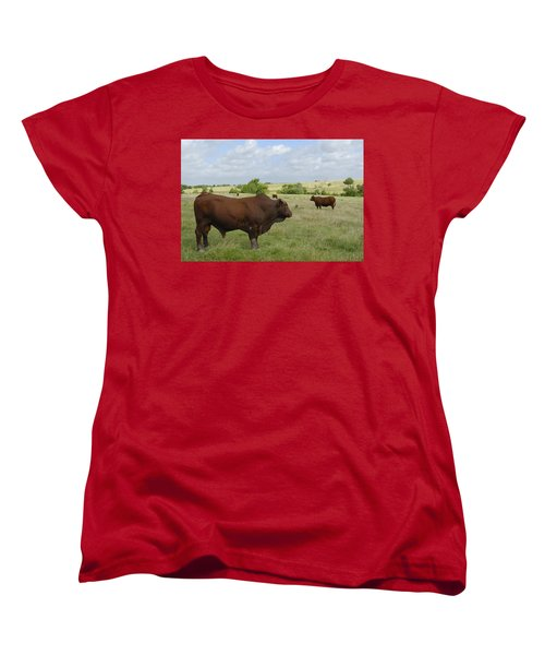 Women's T-Shirt (Standard Cut) featuring the photograph Bull And Cattle by Charles Beeler