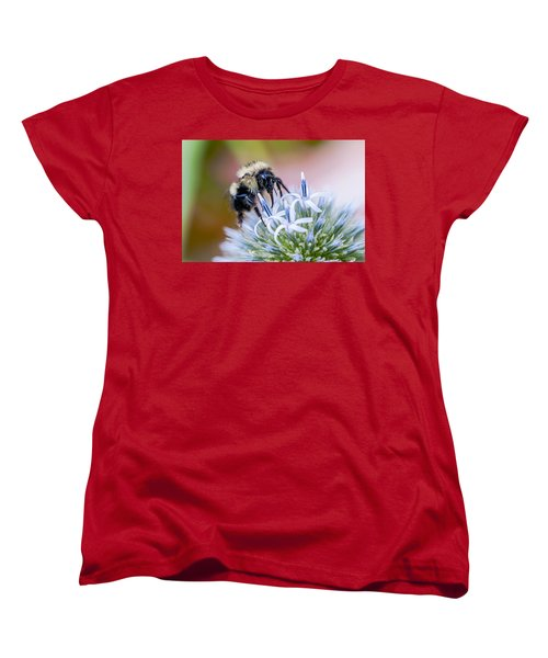 Bumblebee On Thistle Blossom Women's T-Shirt (Standard Cut) by Marty Saccone