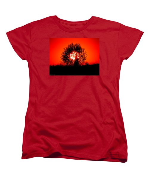 Burning Bush Women's T-Shirt (Standard Cut) by Nick Kirby