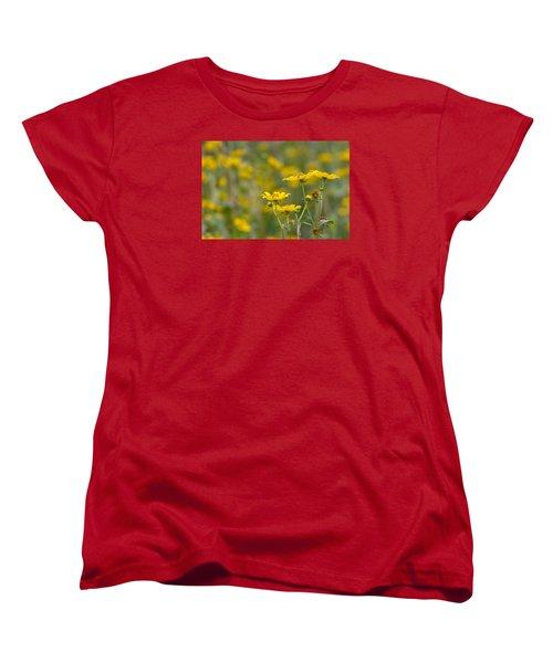 Women's T-Shirt (Standard Cut) featuring the photograph Burrmarigold by Paul Rebmann