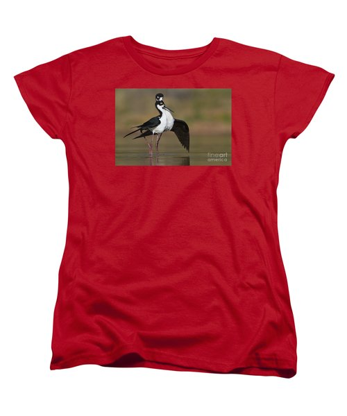 Women's T-Shirt (Standard Cut) featuring the photograph Can I Have This Dance by Bryan Keil