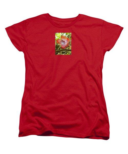 Cannonball Tree Flower Hawaii Women's T-Shirt (Standard Cut) by Venetia Featherstone-Witty
