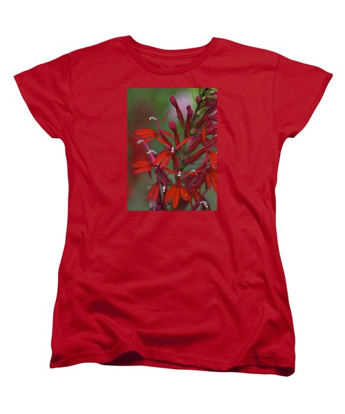 Cardinal Flower Women's T-Shirt (Standard Cut) by Jane Eleanor Nicholas