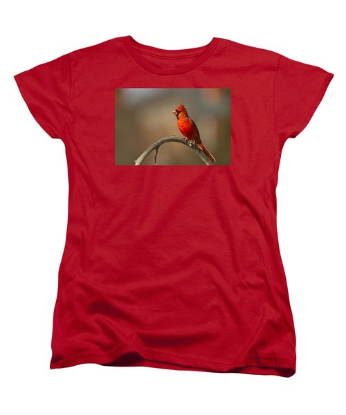 Women's T-Shirt (Standard Cut) featuring the photograph Cardinal by Jerry Gammon