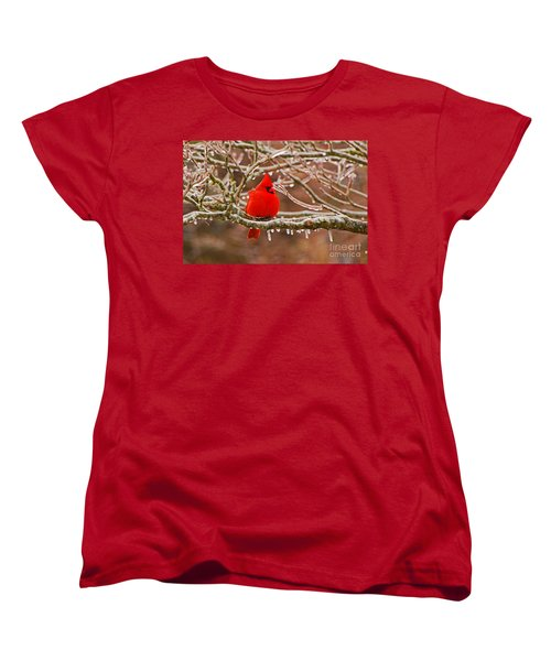 Cardinal Women's T-Shirt (Standard Cut) by Mary Carol Story