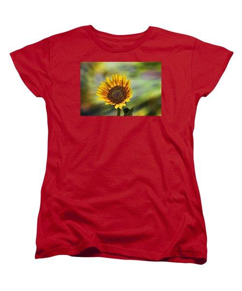 Celebrating The Sunlight Women's T-Shirt (Standard Cut) by Gary Holmes