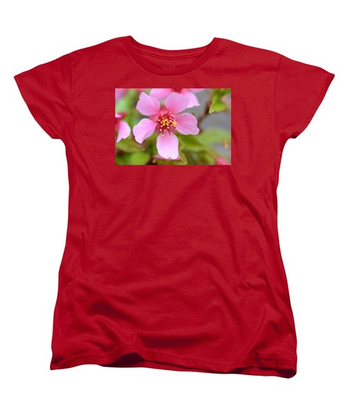 Cherry Blossom Women's T-Shirt (Standard Cut) by Lisa Phillips