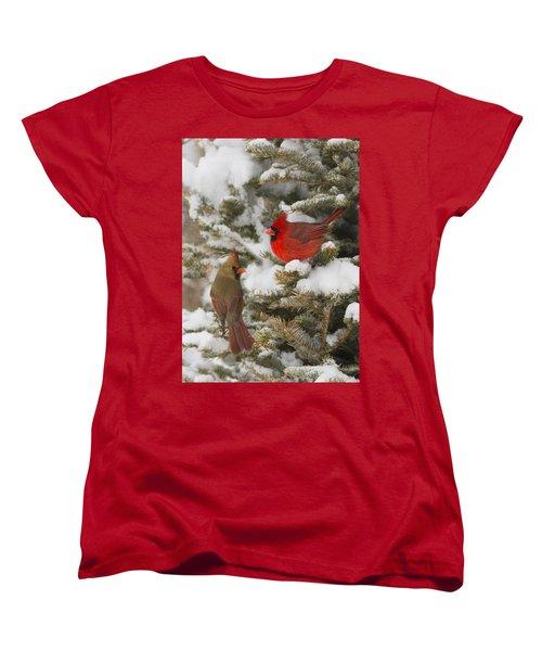 Christmas Card With Cardinals Women's T-Shirt (Standard Cut) by Mircea Costina Photography