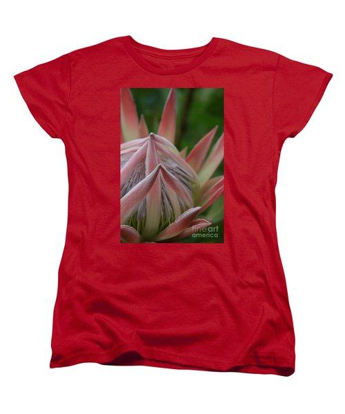 Cloths Of Heaven  Women's T-Shirt (Standard Cut)