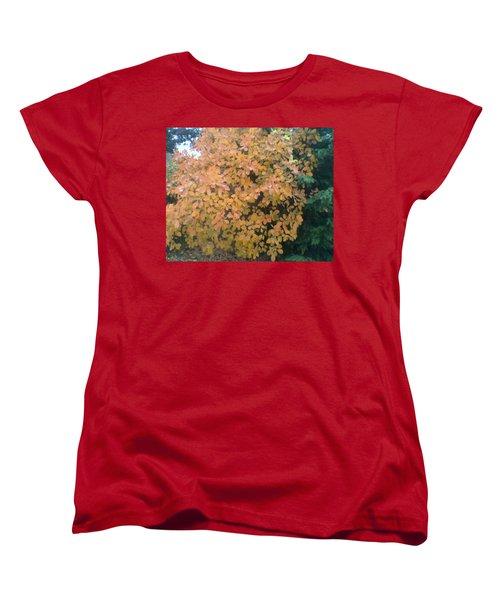 Color Surprise Women's T-Shirt (Standard Cut) by David Trotter