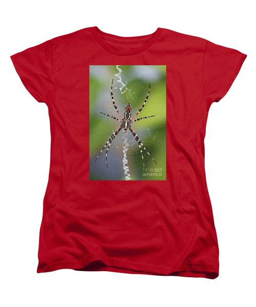 Colorful Spider Women's T-Shirt (Standard Cut) by Kevin McCarthy