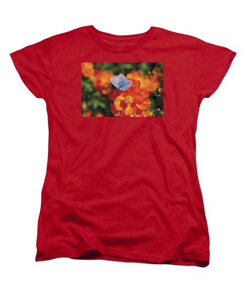 Women's T-Shirt (Standard Cut) featuring the photograph Common Blue Butterfly by Lana Enderle