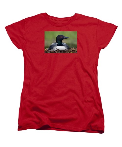 Common Loon On Nest British Columbia Women's T-Shirt (Standard Cut)