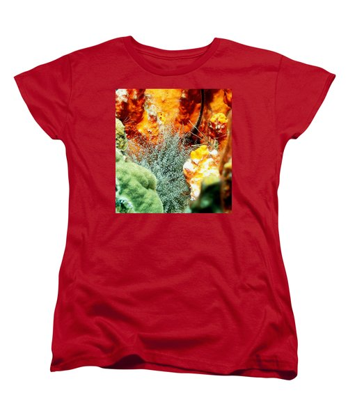 Women's T-Shirt (Standard Cut) featuring the photograph Corkscrew Anemone Grove by Amy McDaniel