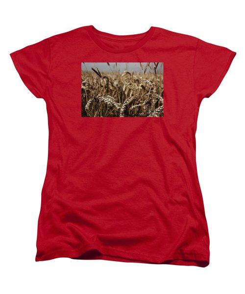 Women's T-Shirt (Standard Cut) featuring the photograph Corn Field by Vicki Spindler