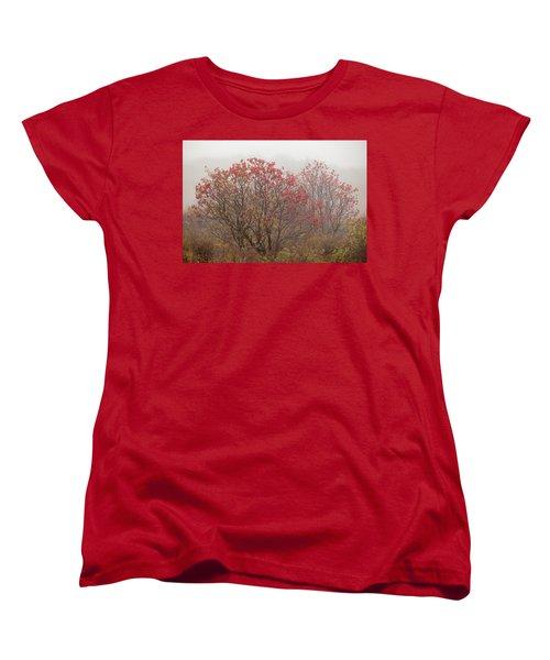 Crimson Fog Women's T-Shirt (Standard Cut) by Melinda Ledsome