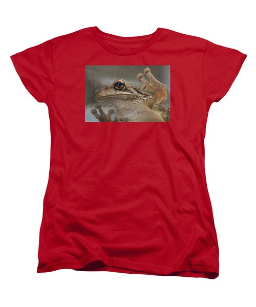 Cuban Treefrog Women's T-Shirt (Standard Cut) by Paul Rebmann