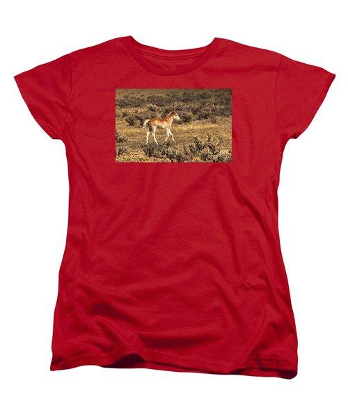 Cute Colt Wild Horse On Navajo Indian Reservation  Women's T-Shirt (Standard Cut) by Jerry Cowart